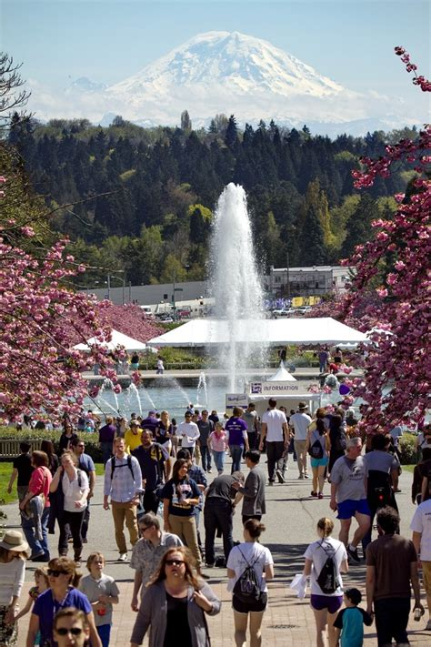 High rate of Washington community-college grads go on to