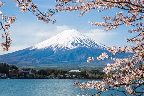 Five curious day trips from Tokyo | Atlas by Etihad