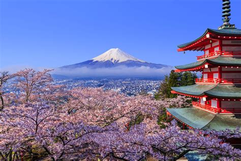 Didn't get to see Mount Fuji due to bad weather? Hotel