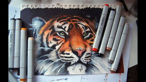 Tiger - copic markers time lapse - YouTube